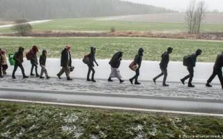 Число мигрантов в германии