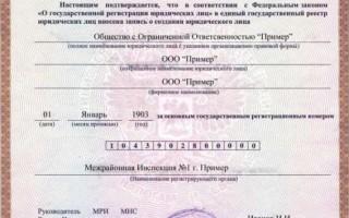Свидетельство о государственной регистрации огрн ооо